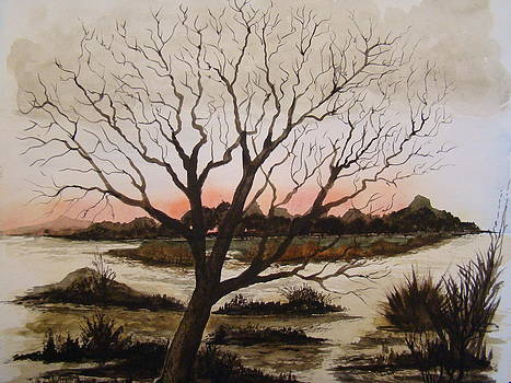 Sunrise by Chip Picott