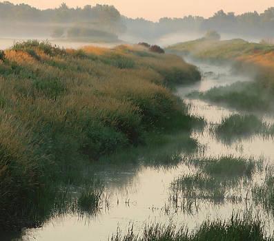 Sunrise Creek by Sarah Boyd