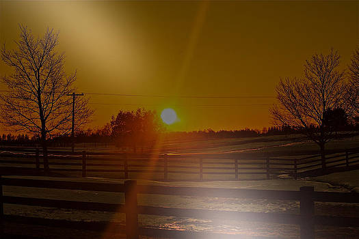 Sunrise Echo by Catherine Renzini