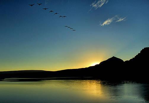 Matthew Winn - Sunrise Flyby