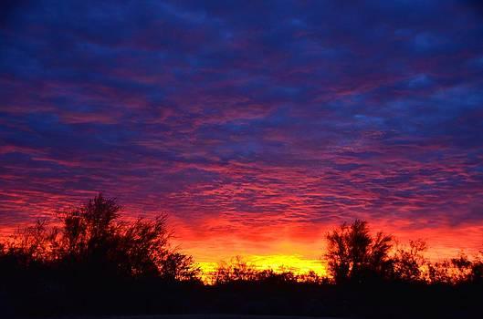 Sunrise Glory by Tina Hannaford