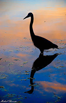 Sunrise Heron Orlando 12-22-13 by Michael  Bennett