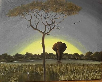 Sunrise by Hilton Mwakima