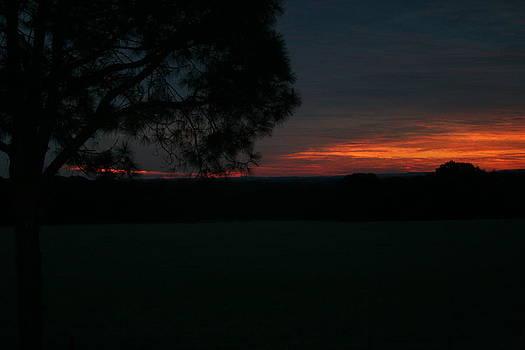 Sunrise II by Lisa Browning