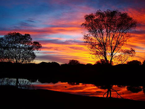 Qing Yang - Sunrise in Australia Outback