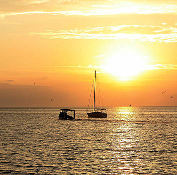 Suzie Banks - Sunrise in Cedar Key