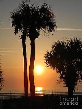 Sunrise in FL by Joanne Askew