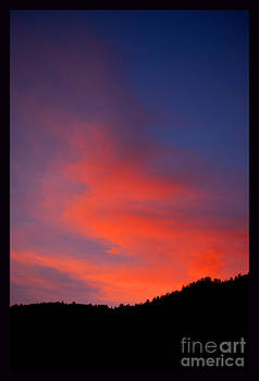 Sunrise in the Canyon by Susanne Still