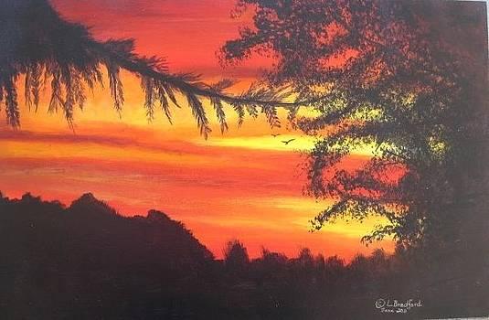 Sunrise by Lorraine Bradford