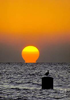 Lake Sunrise by Martin Konopacki