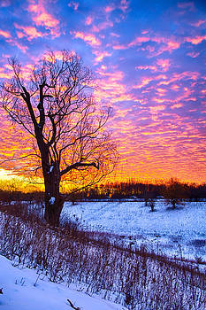 Sunrise North of Chicago 12-18-13 003 by Michael  Bennett