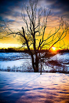 Sunrise North of Chicago 12-18-13 004 by Michael  Bennett
