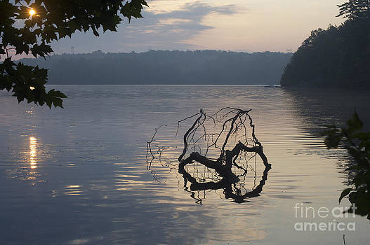 Elaine Mikkelstrup - Sunrise Oastler Lake