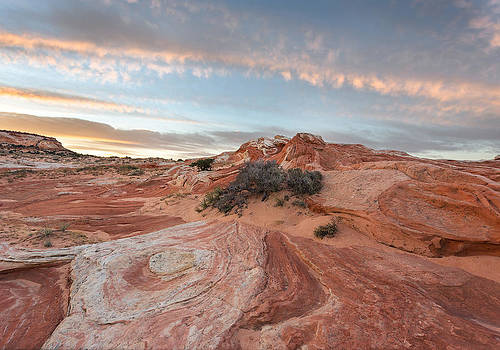 Nathan Mccreery - Sunrise on Redrock