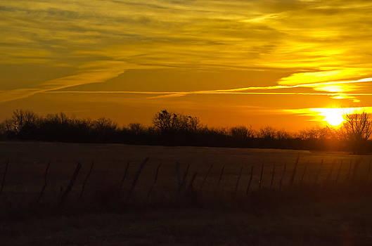 Lisa Moore - Sunrise on the Fencerow