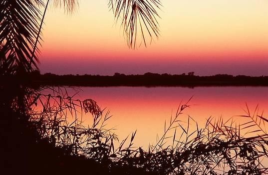 Sunrise on the Okavango Delta by Stefan Carpenter