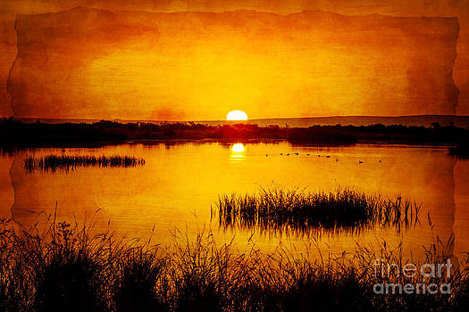 Sunrise On The Pond by Pam Vick
