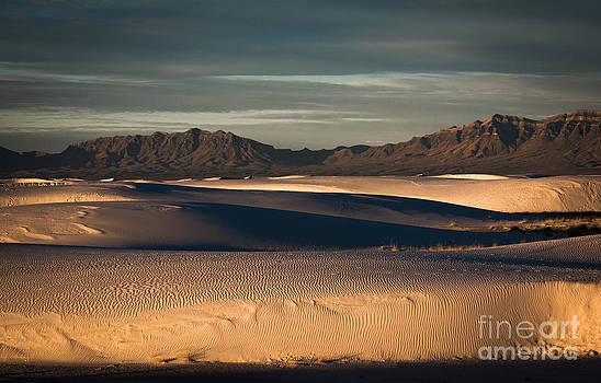 Sunrise on the Dunes by Sherry Davis
