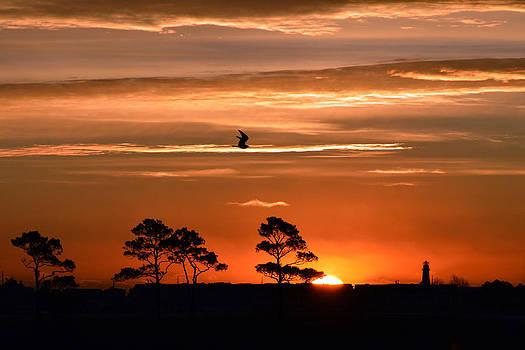 Bill Swartwout Fine Art Photography - Sunrise over Fenwick Island