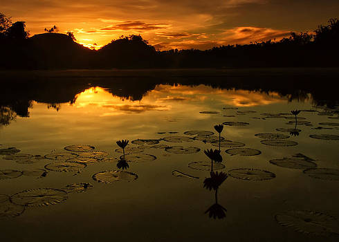 Sunrise over Lake of Lilies by Jojie Alcantara