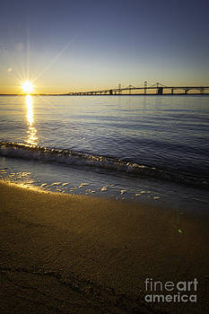Sunrise Over the Chesapeake Bay Bridge Vertical by Brycia James