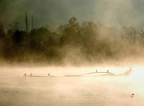 RicardMN Photography - Sunrise over the lake - 4