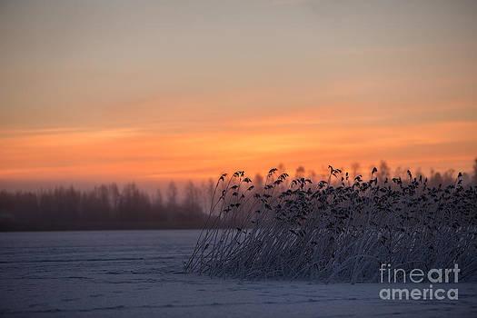 Sunrise over the lake by Markus Hovikoski