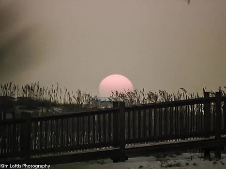 Sunrise over the sea oats  by Kim Loftis