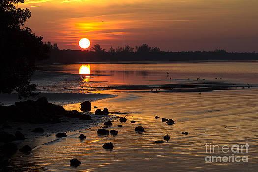 Sunrise Photograph by Meg Rousher