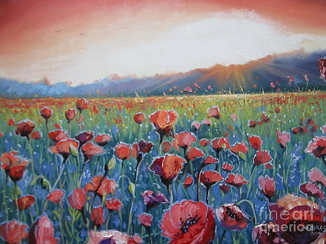 Sunrise Poppies by Andrei Attila Mezei
