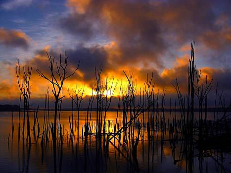 Raymond Salani III - Sunrise