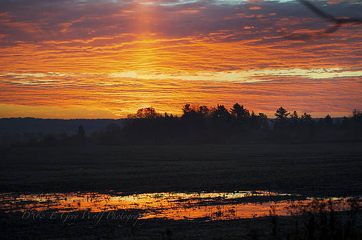 Elaine Mikkelstrup - Sunrise Reflection