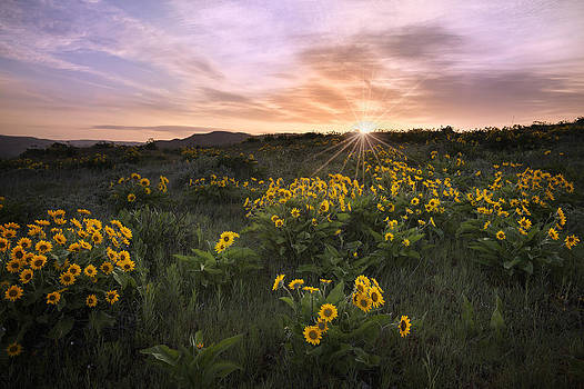 Sunrise Service by Jon Ares