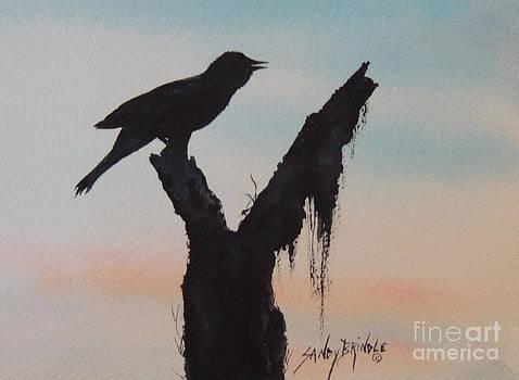 Sunrise Singer by Sandy Brindle