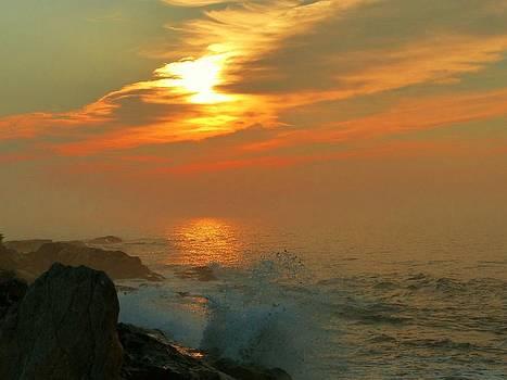 Sunrise Splash by Elaine Franklin