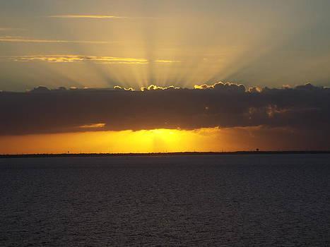 Sunrise Splender by Cindy Croal
