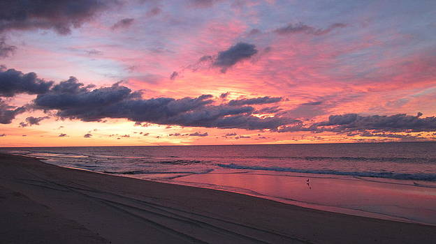 Sunrise Surf by Joanna Baker - Jenkins