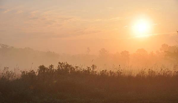 Sunrise by Tanis Crooks