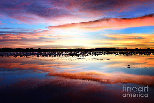 Sunrise by Thanh Nguyen
