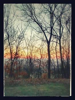 Sunrise Through The Trees by Dustin Soph