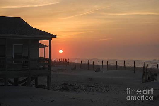Sunrise by Tina Shamay