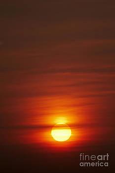 Sunrise by Tony Cordoza