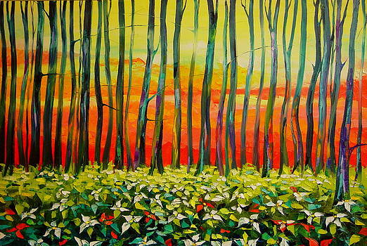 Sunrise. Trilliums by Keren Gorzhaltsan
