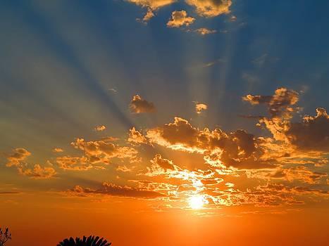 Puerto Vallarta Sunset  by Vidyut Singhal