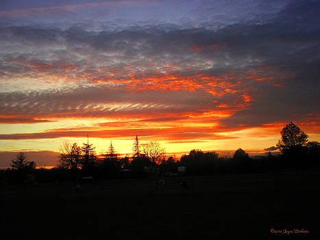 Joyce Dickens - Sunset 02 28 13
