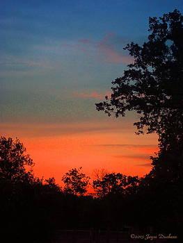 Joyce Dickens - Sunset 05 14 13