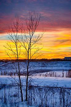 Sunset 1-3-14 Northern Illinois 002  by Michael  Bennett