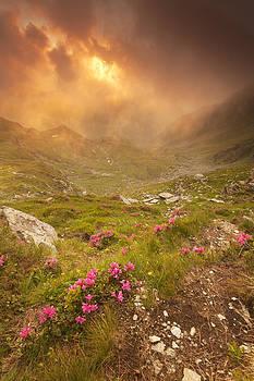 Sunset 11 by Toma Bonciu