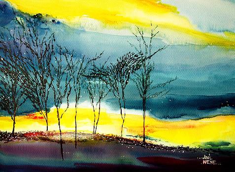 Sunset 3 by Anil Nene