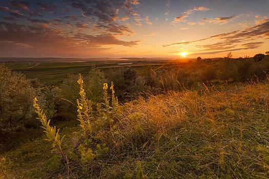 Sunset 4 by Toma Bonciu